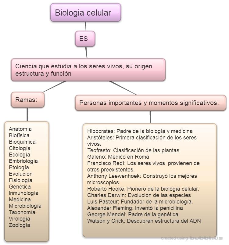 Biología Celular: INTRODUCCIÓN A LA BIOLOGÍA CELULAR DENTRO DE ...
