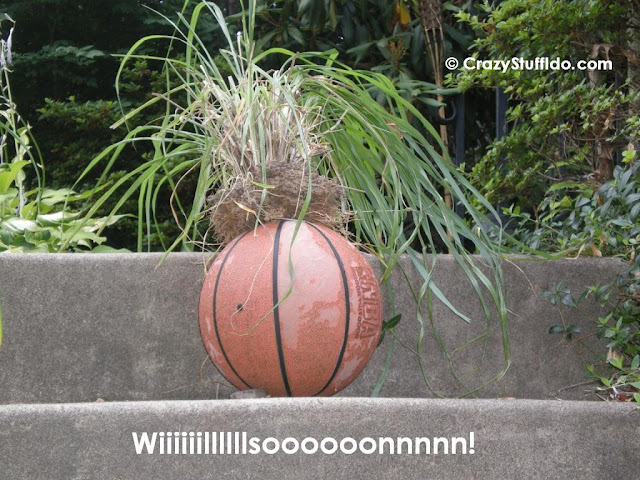If you ever saw the movie Castaway, you would understand...  Wilson