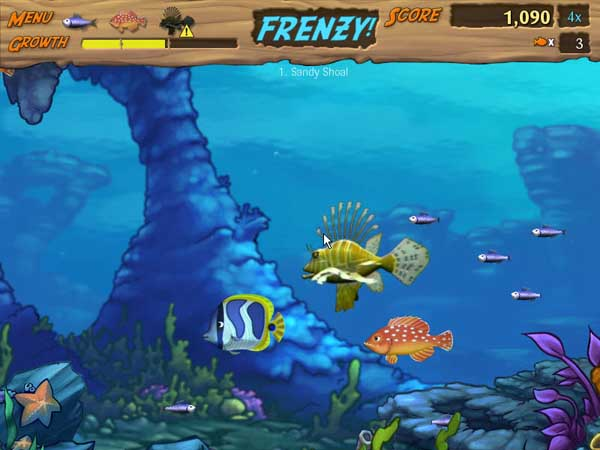 Feeding frenzy 2 game free download full version for pc for Feed and grow fish free download full game