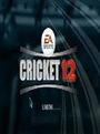 Cricket-2013