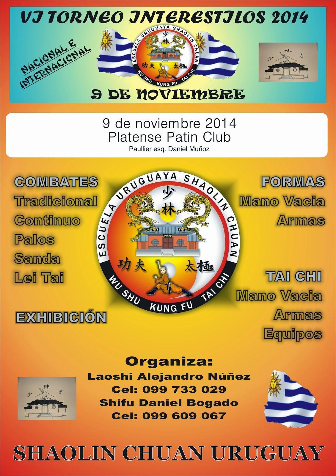 Afiche (V Torneo Intesrestilos 2014)