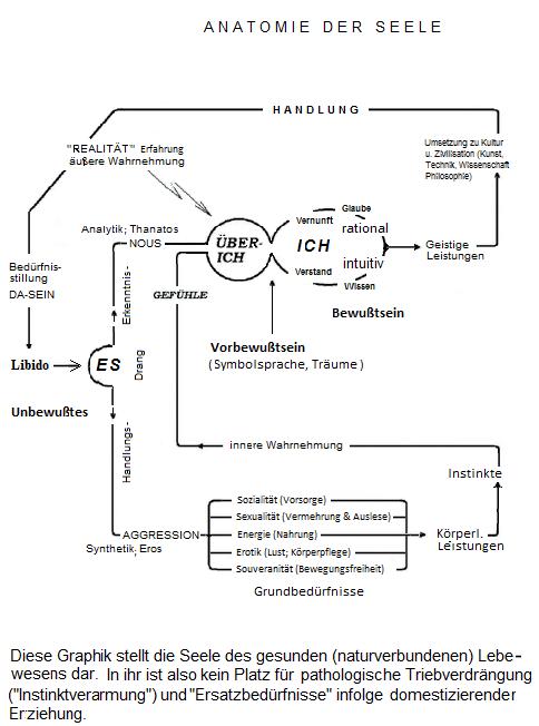 Das 3-Instanzen-Model