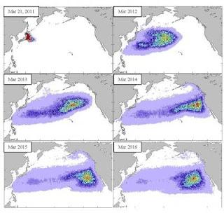 La ruta marina que seguirá la enorme masa de escombros generada por el tsunami japonés