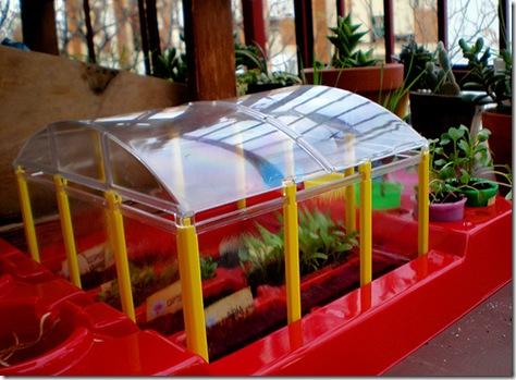 Reciclaje como hacer un invernadero con botellas de plastico for Materiales para un vivero