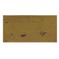 https://scrap-casket.jp/product_item.php?itemid=19117