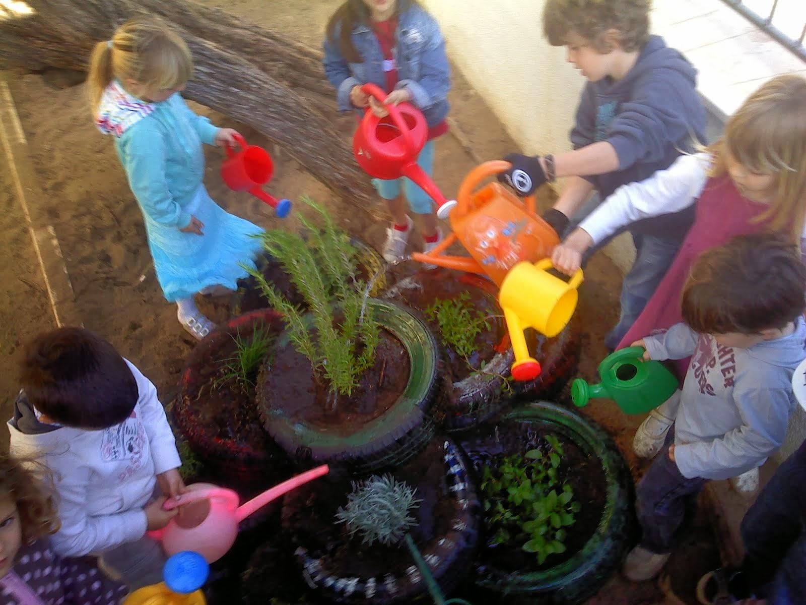 Permacultura Crianças