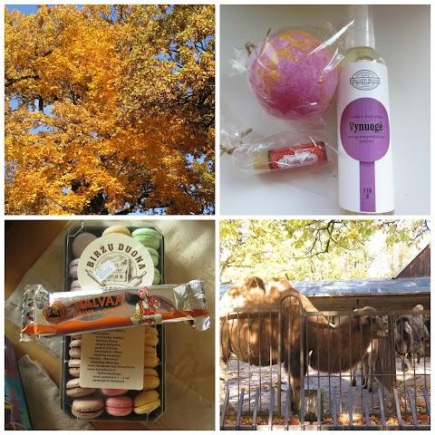Mano diena ir pirkiniai. Myliu rudenį.