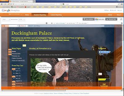 Google Analytics screen usage displaying Duckinghampalace.com
