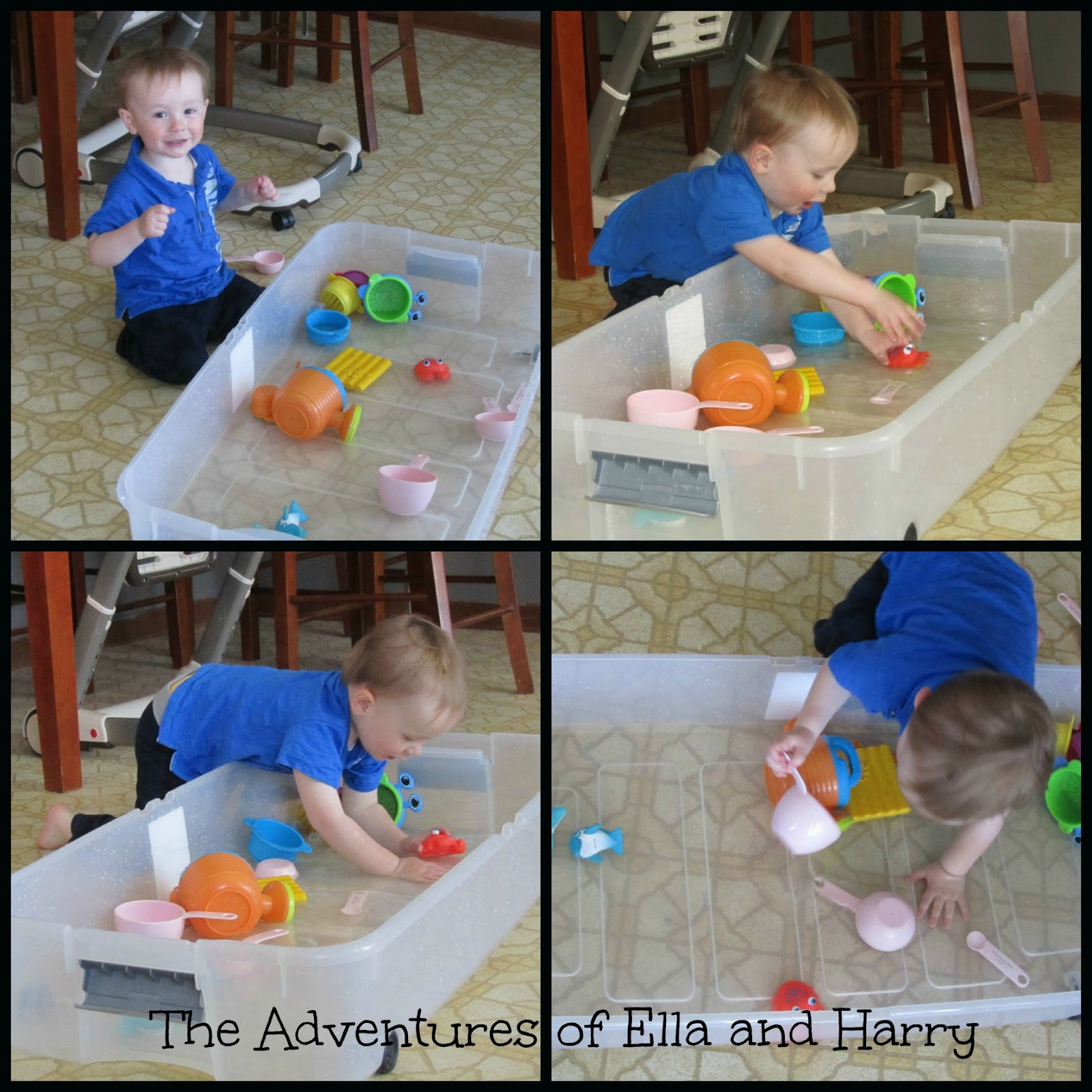 the adventures of ella harry and benjamin may 2013