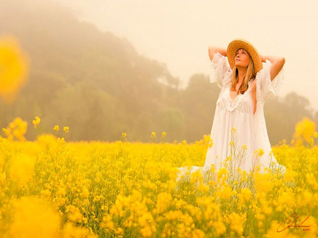 Gee must be nice to wake and walk in a sea of yellow flowers