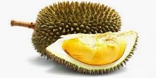 Buah Durian , Khasiat Buah Durian , Durian , Musim Durian