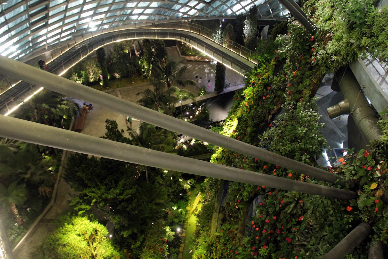 Have you visited the Cloud Forest at Gardens by the Bay? | OnlyWilliam