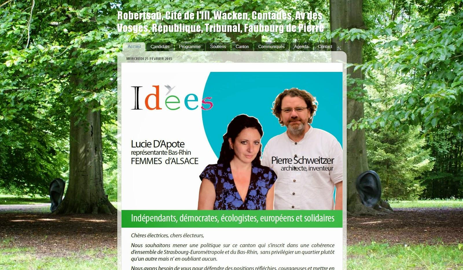 http://idees-departementales2015.blogspot.fr/