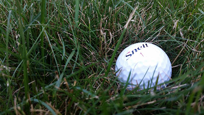Snell golf ball in the grass