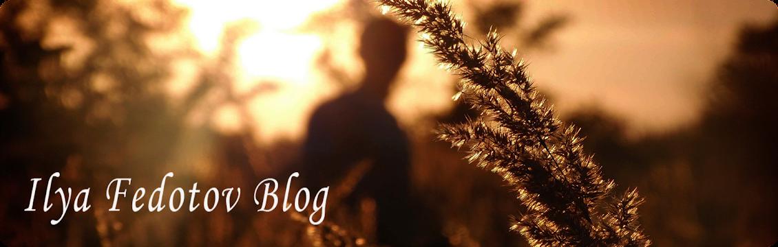 Ilya Fedotov Blog