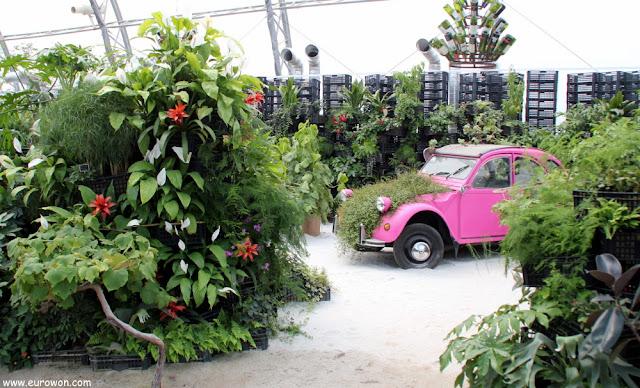 Jardín interior con un coche antiguo rosa