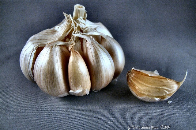 research paper on garlic