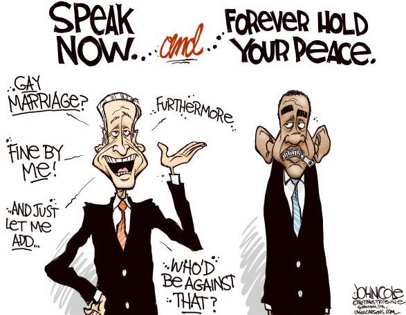 obama political cartoon,gay marriage political cartoon,gay marriage