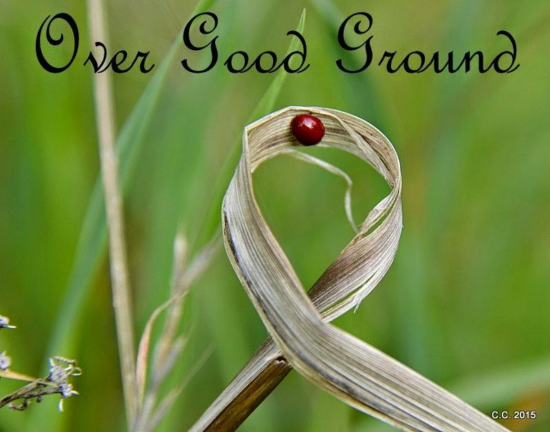 Over Good Ground