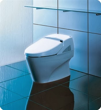 http://www.decorplanet.com/Toto_Neorest_600_Toilet_p/ms990cgr.htm