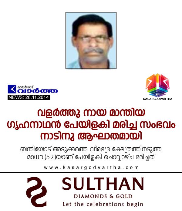 Dog bite, Kumbala, Obituary, Kasaragod, Kerala, Madhava, Man dies after dog bite.