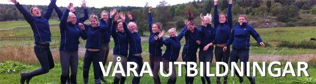 www3.ridsport.se/Distriktssajter/Uppland/Utbildning/Aktuellautbilldningar/
