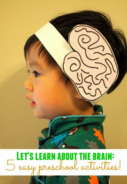 5 easy preschool activities to teach kids about the brain