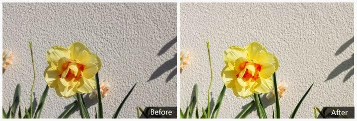 Antes e Depois no Pomelo