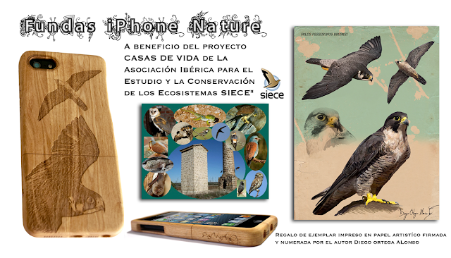 Fundas iPhone Nature Cases wildlife art olive wood falcon halcón peregrino brookei