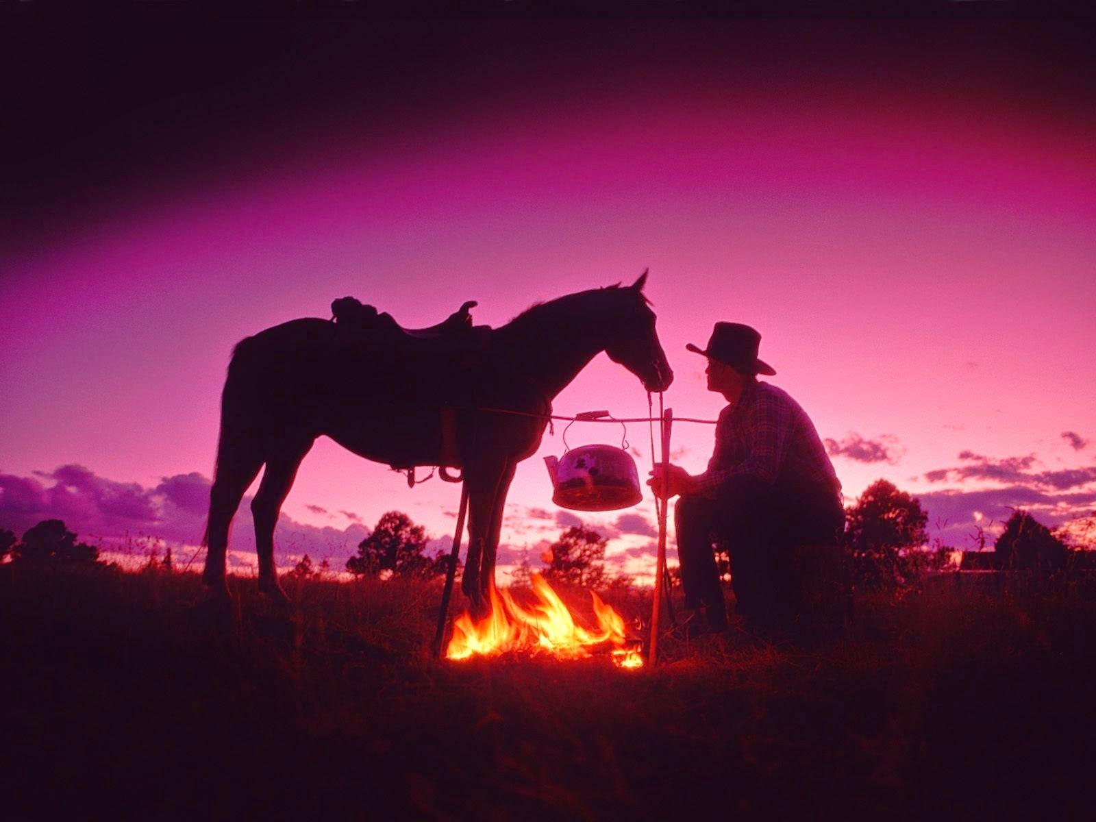 Best   Wallpaper Horse Pink - 100603  Best Photo Reference_69882.jpg