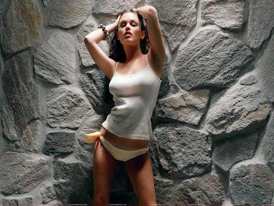rachel_sarah_bilson_hot_wallpaper_in_lingerie_fun_hungama