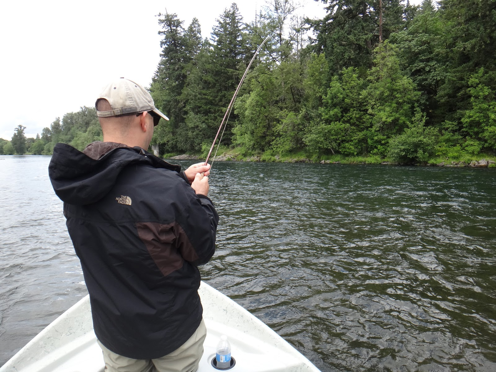 The caddis fly oregon fly fishing blog mckenzie river fly for Fishing report oregon