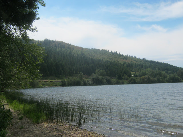 Lake Cocolalla, public access: lake shore