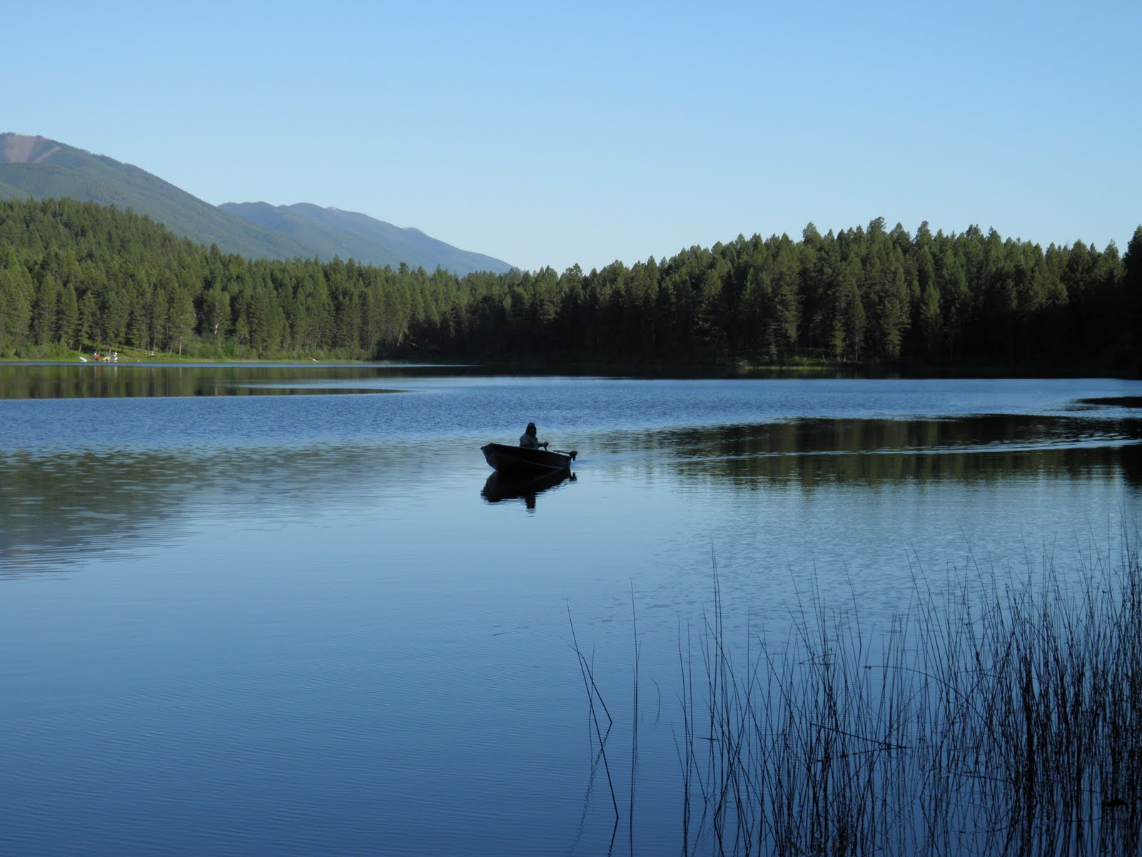 buddhist single men in loon lake Median gross rent in loon lake, wa in 2016: $577 housing units in loon  2,368 single-parent households (731 men,  cars and other vehicles available in loon .