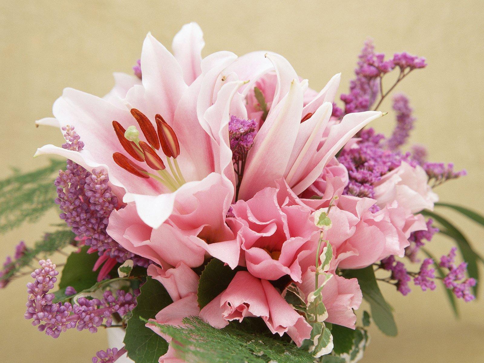 http://2.bp.blogspot.com/-ZhyGDlNsp28/TZj5TWqqCkI/AAAAAAAAANo/uXHu_W8BcNk/s1600/Beautiful_PinkFlowers_9966_1600_1200.jpg