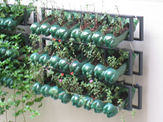 Gardening In Bottle : All things Good: 9 uses for plastic bottles