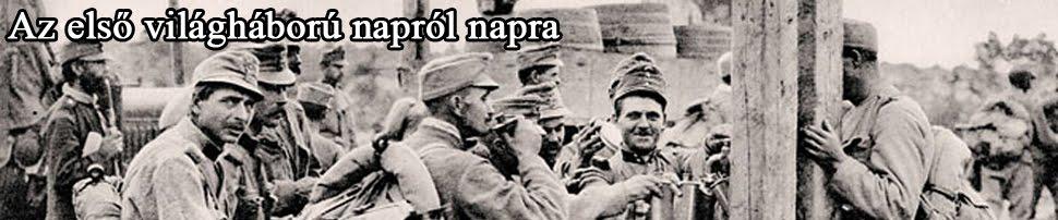Az első világháború napról napra