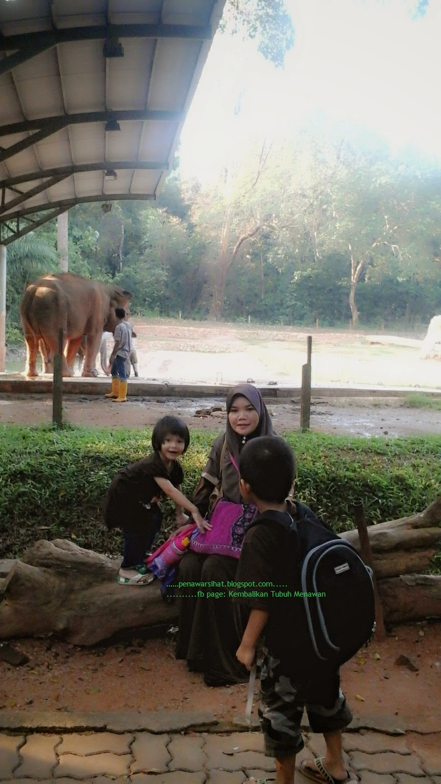 n zoo again.....