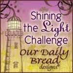 Our Daily Bread Shining Light Challenge Award