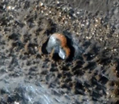 Strange Dome Structure Found On Mars 2015, UFO Sighting News