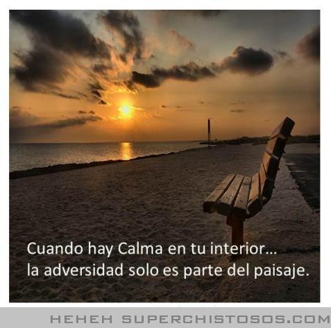 Principios divinos calma for Frases de calma interior