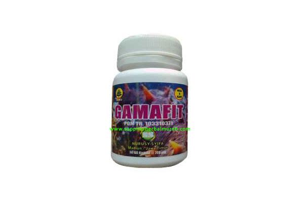 Gamafit 60 Kapsul (Gamat 100%)