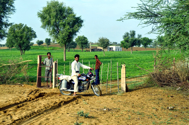 gate of farm