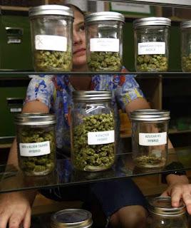 """Dispensários de """"maconha medicinal"""":vizinhos apontavam aumento insegurança"""