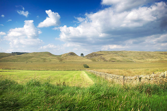 A view of sycamore gap on hadrian's wall from a distance, it's actually from the road that the bus travels along!