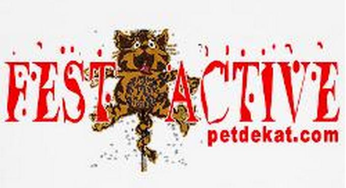 Get FEST*ACTIVE