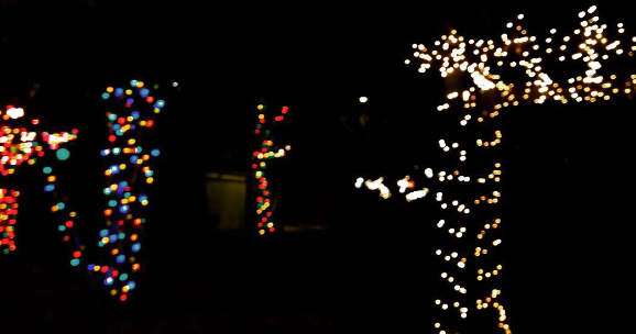 bloomingdale: Crispus Attucks Park Christmas lights at night