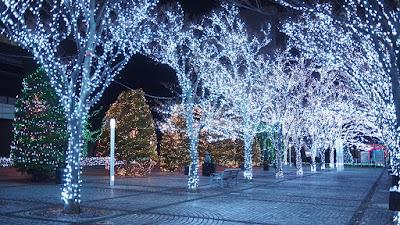 Kyocera Headquarters Illumination & Concert 2015.