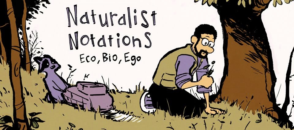 Naturalist Notations