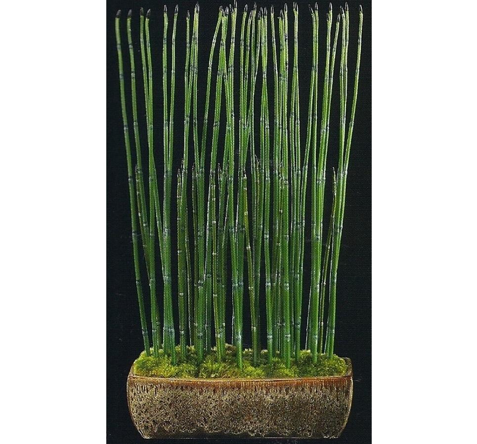 Bamboo worktops photos lucky bamboo pots and vases lucky bamboo pots and vases5 reviewsmspy